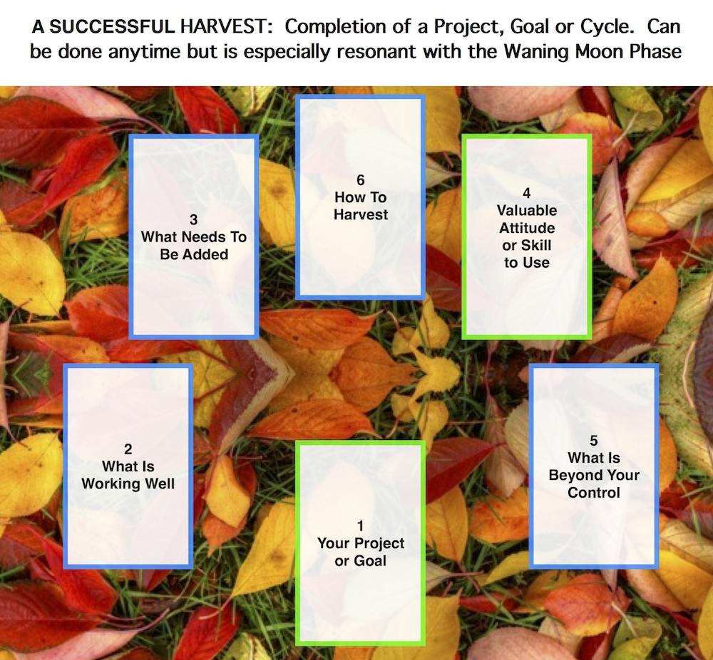 Successful Harvest Tarot & Totem Spread