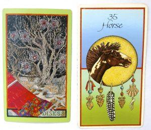 Wheel of Change Tarot & Medicine Cards